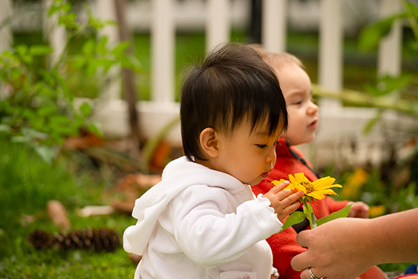 Nurturing children's biophilia and love of nature