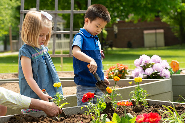 children gardening in kindergarten